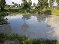 Thương tâm 5 trẻ nhỏ đuối nước khi tắm hồ