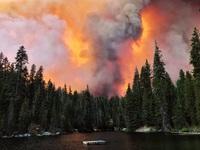 Giải cứu hơn 200 người bị mắc kẹt do cháy rừng ở California, Mỹ