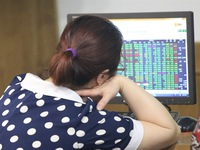 VN stocks up for 2nd day