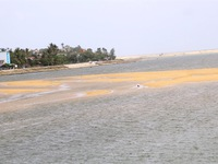Fishermen flounderwith sea gate sand deposits