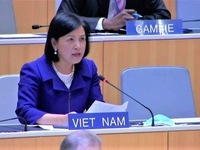 Vietnam lauds India's growth at WTO trade review