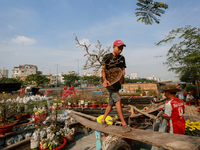 HCM City to host annual flower festival and markets during Tet