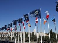 Châu Âu ưu tiên phục hồi và tái thiết, khắc phục thiệt hại do dịch COVID-19