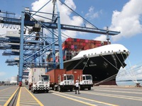 Export market records positive signs