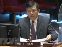 Vietnam calls on international community to expand support for DR Congo