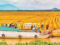 Turning agriculture into a promised land
