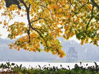 Hanoi targets cultural and MICE tourism