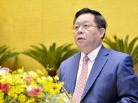Official urges building action plans to implement 13th Party Congress's Resolution