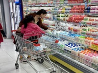 Vietnamese retail sector needs new breakthroughs