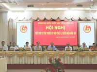 Deputy PM Truong Hoa Binh meets with Long An voters