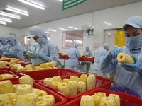 Vietnam targets US$10 billion from fruit, vegetable exports by 2030