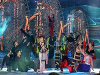 Art programme celebrates Vietnam Ethnic Group Culture Day