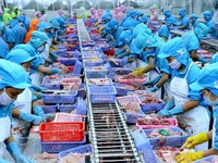 Two-way trade between Vietnam and UAE grows strongly