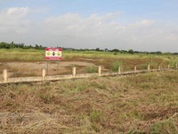 Vietnamese firm selected as prime contractor for Bien Hoa Airbase dioxin remediation project