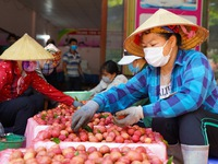 Thương nhân Trung Quốc chuyển tiền đặt mua 30.000 tấn vải thiều Bắc Giang