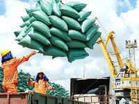 Export surges by 30% amidst COVID-19