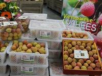 Vải thiều Việt tại Australia được trả giá gần 52 triệu đồng/1kg