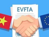 Điều kiện miễn chứng từ chứng nhận xuất xứ hàng hóa trong Hiệp định EVFTA