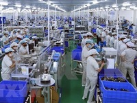 Binh Duong sees over 3,000 new firms in six months