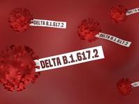 INFORGRAPHIC: Biến chủng Delta 'đánh thức' nỗi lo kéo dài đại dịch COVID-19