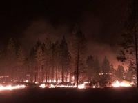 Sét đánh gây ra trận cháy rừng nghiêm trọng Bootleg ở bang Oregon
