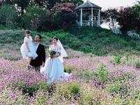 'Mùa hoa tìm lại' kết thúc, Thanh Hương tung ảnh đám cưới hạnh phúc của Lệ - Đồng