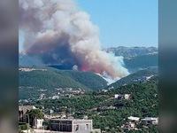 Cháy rừng nghiêm trọng tàn phá miền Bắc Lebanon
