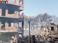 Thổ Nhĩ Kỳ điều tra nguyên nhân cháy rừng dữ dội