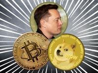 Elon Musk giở chiêu độc khó ngờ để thổi giá tiền điện tử