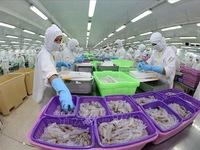 Xuất khẩu thủy sản 6 tháng tăng gần 14%