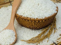 Vietnam accounts for 87 percent of Philippines' rice imports