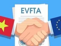 Domestic Advisory Group set up under EVFTA