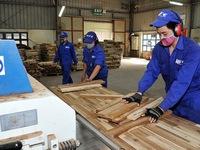 Better utilising opportunities of EU-Vietnam free trade agreement