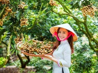 Vietnamese agricultural products favoured in choosy EU market