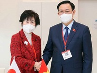 Top legislator meets with Japan's upper house chief in Austria