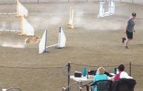 Chú chó  Corgi chân ngắn vượt chướng ngại vật siêu nhanh