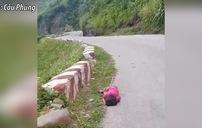 Bé gái nằm ngủ say sưa bên lề đường đèo ở Hà Giang