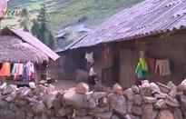 Diện mạo mới trên vùng đất Mèo Vạc, Hà Giang