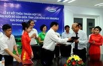 Vinamilk hợp tác với tỉnh Lâm Đồng phát triển chăn nuôi bò sữa giai đoạn 2015-2020