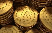 [INFOGRAPHIC] Bitcoin tăng hơn 1.100% chỉ trong năm 2017