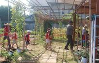 Trải nghiệm làm nông dân tại làng rau sạch Củ Chi