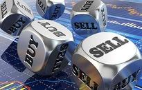 Hàng loạt cổ phiếu vốn hóa lớn giảm sàn, VN-Index tuột mốc 1.000 điểm