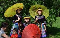 Việt Nam tham dự Lễ hội các sắc tộc thiểu số tại Cộng hòa Czech