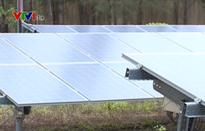 Năng lượng mặt trời hấp dẫn nhà đầu tư