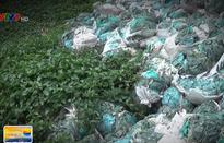 Đồng Nai: 30 ngày để tháo dỡ nhà máy nhựa gây ô nhiễm