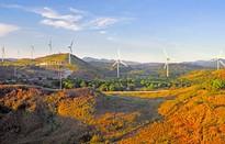 Trang trại gió - Điểm du lịch mới ở Philippines