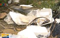 Bãi xe trên đèo Cù Hin (Nha Trang) biến thành… bãi rác