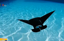 Singapore phát triển robot cá đuối