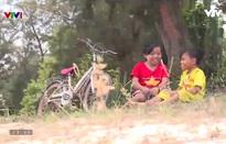 Gala Cặp lá yêu thương: Những người con của hòa bình