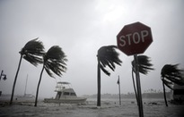 """Siêu bão Irma, Harvey có thể """"thổi bay"""" gần 300 tỷ USD của nước Mỹ"""